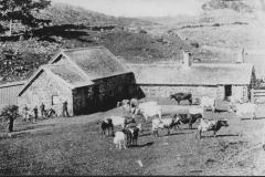 1904-001