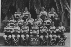 1950-015