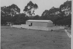 1953-019